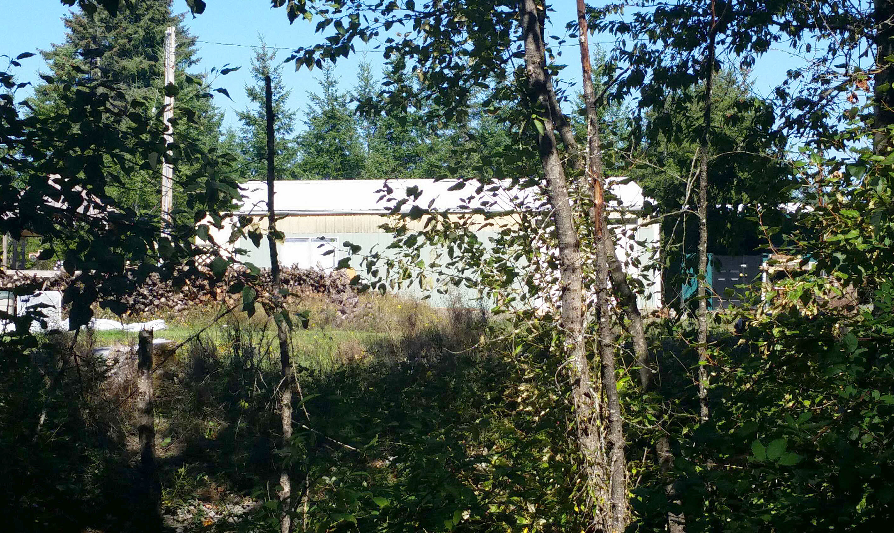 Lease to Own Home on King Winlock, WA