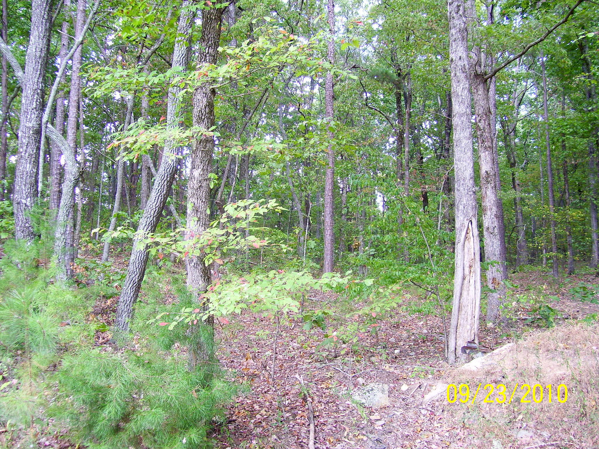 Lease to Own Home on Off Trout Farm Road Talking Rock, GA